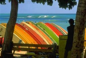 Curso de inglés con surf