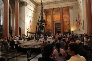 Visita al museo de historia natural de New York