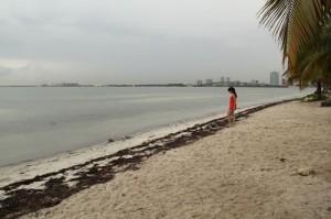 Baño en el Atlántico con el fondo de Miami